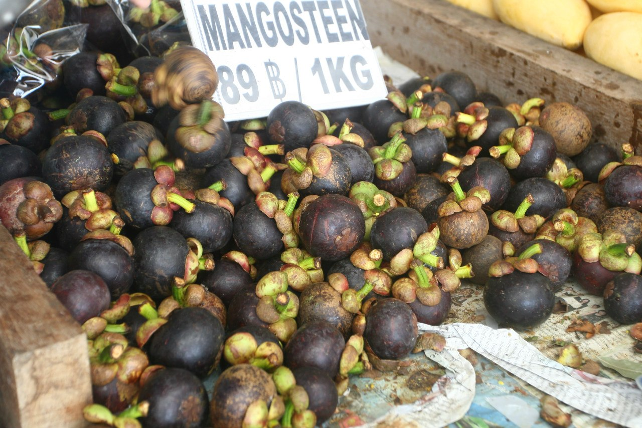siddharthandshruti_eatlocal_mangosteen