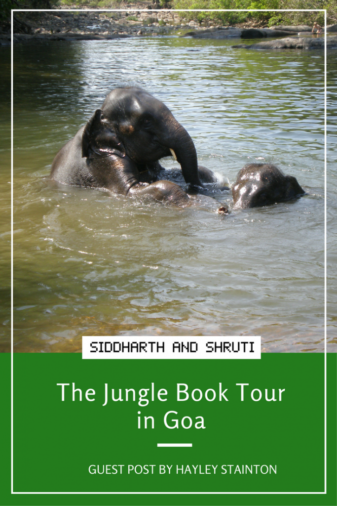 Jungle Book Tour by Hayley Stainton